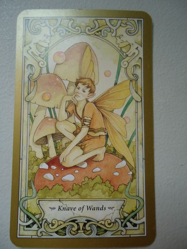 11 Knave of Wands
