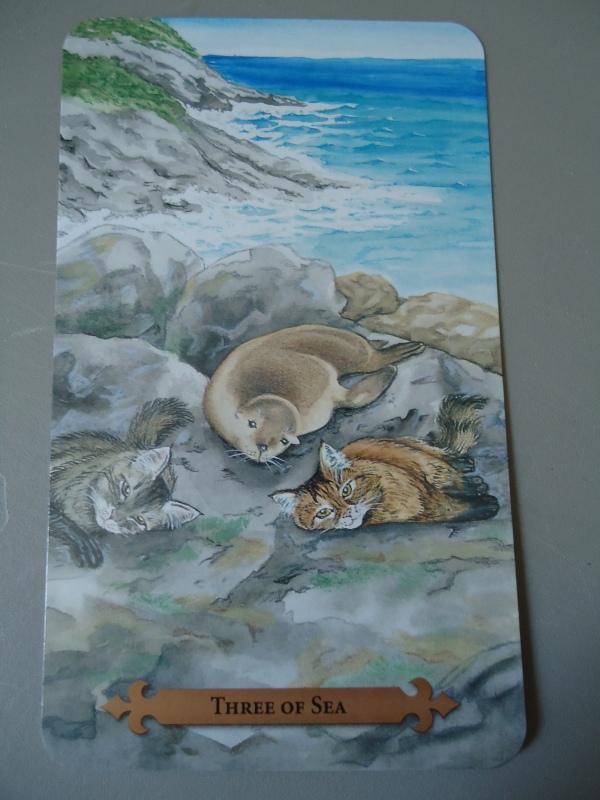 3 of Sea